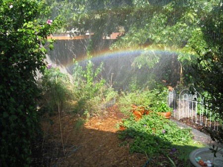 Rainbow in the Labyrinth Garden