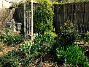 Labyrinth Garden.